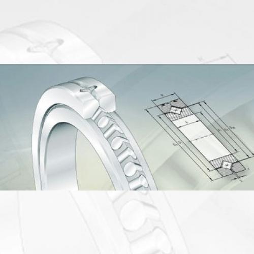 Bearing FAG Crossed Roller Bearings