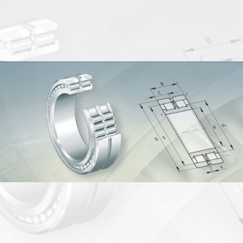 Bearing FAG Full Complement Cylindrical Roller Bearings