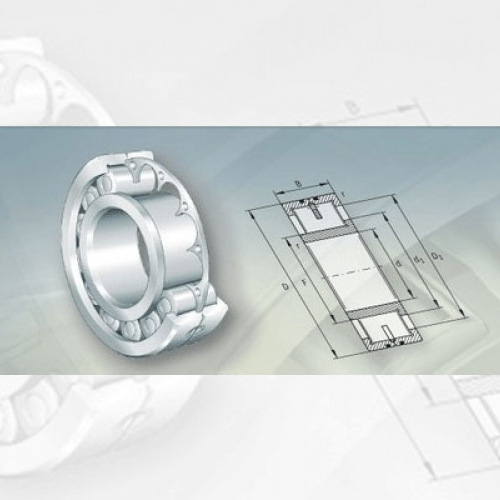 Bearing FAG Low-Friction Cylindrical Roller Bearings