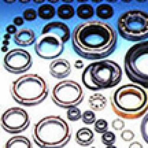 Special Environment EXSEV Bearings