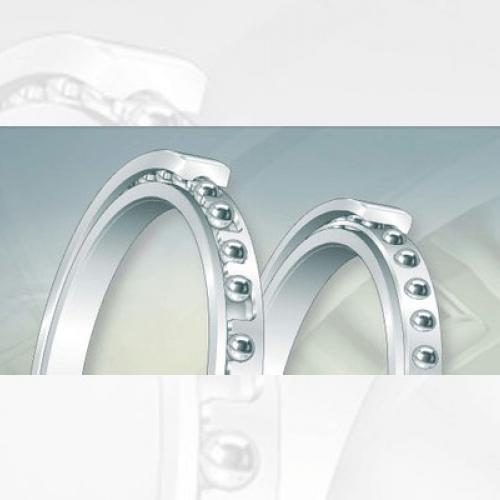 Bearing FAG Thin Section Bearings